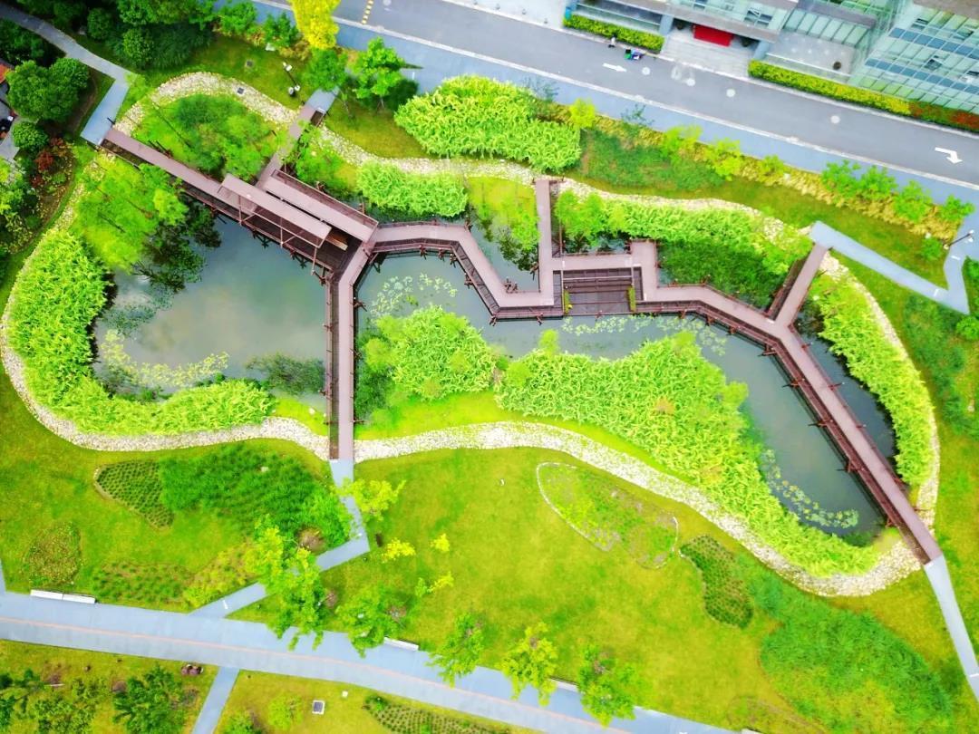 滨江雨水花园